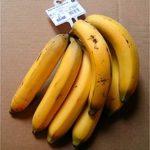 Voici des bananes.