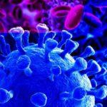 Pandémie de peur face au coronavirus chinois !